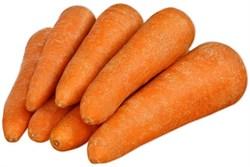 Морковь импортная 1кг - фото 4706