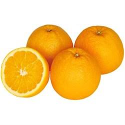 Апельсины импорт. 1кг - фото 6615