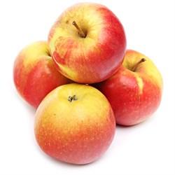 Яблоки айдоред 1кг - фото 6618