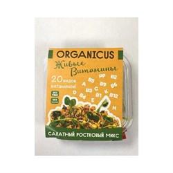 Салат Органикус Живые витамины 150г - фото 6623