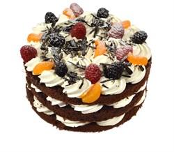 Торт сказочный лес 100 г. - фото 6942