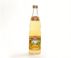 Напиток Черноголовка Лимонад оригинальный сильногазированный 0,5л ст/б - фото 8554