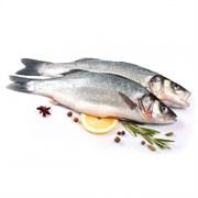 Сибас морской п/ф кг